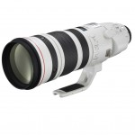 Canon EF 200-400mm F4L IS USM Extender 1.4x